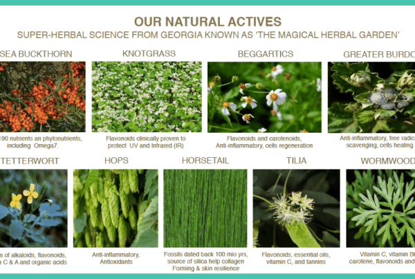 Our Natural Actives - List of Ingredients